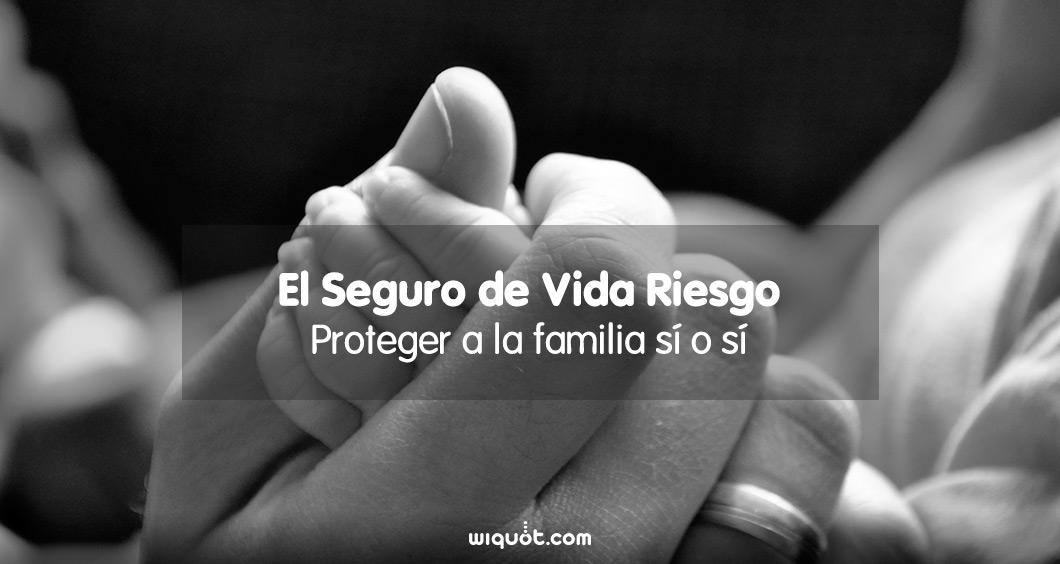 El Seguro de Vida Riesgo Proteger a la familia sí o sí